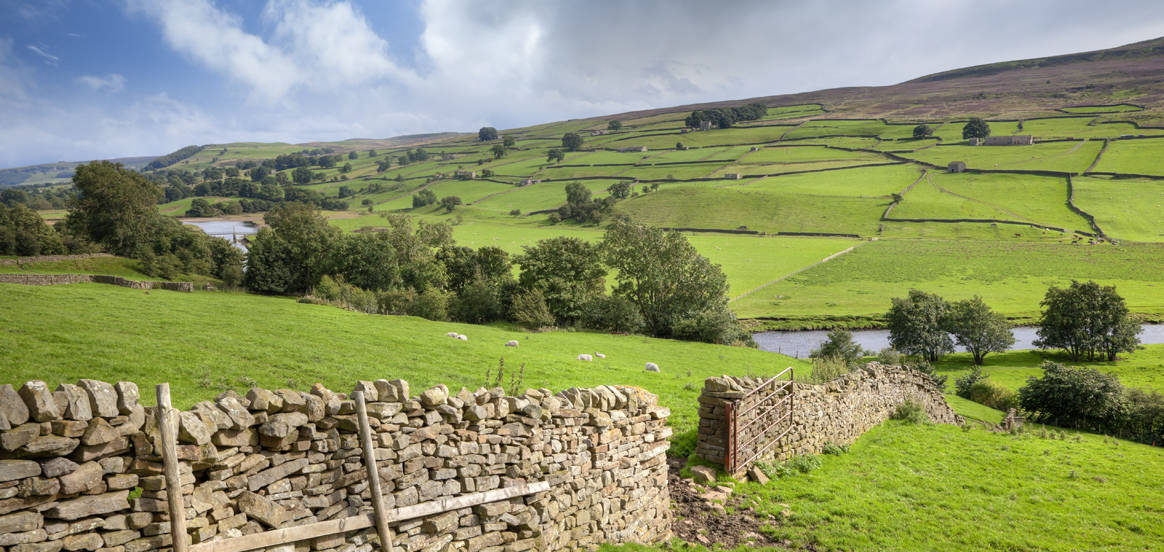 Yorkshire Stone Facing - From The Heart Of Nature